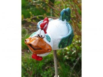 Huhn Berta - der Überflieger