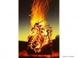 Feuerschale - Feuerkorb *Drachenfeuer*