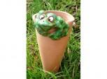 Pflanzenbewässerung - Terracotta - Frosch